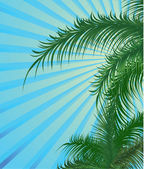 Summer background with palm — Stock Vector