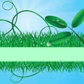 Ecological banner with a grass — Stock Vector