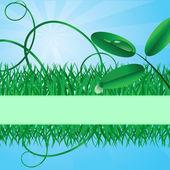 Bannière écologique avec une herbe — Vecteur