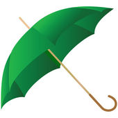 The green umbrella represented — Stock Vector
