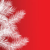 Cadre de branches de pin blanc — Vecteur