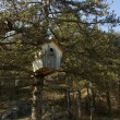 Huge wooden nestling box — ストック写真