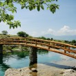 Idyllic rural scene with  bridge — Stock Photo