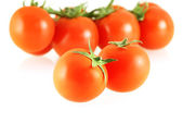 Nice fresh tomatoes — Stock Photo