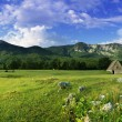 Rural landscape with old house on the fi — Stock Photo