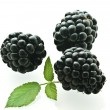 Royalty-Free Stock Photo: Three ripe fresh blackberries