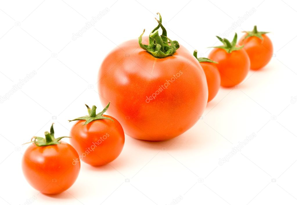 Concept idea Distinguish yourself. Row of tomatoes over white — Stock Photo #1153523