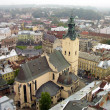 Aerial view of Latin Cathedral — Stock Photo #1134396