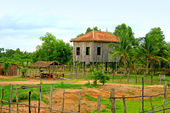 Low buildings in Cambodian jungles — Stock Photo