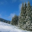 Stock Photo: Carpathian mountains, Ukraine