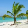 Tropical beach with palm trees, Thailand — Stock Photo #1419512