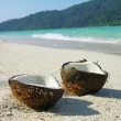 Stock Photo: Opened coconut on the beach