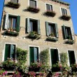 Italian windows with flowers, Venice - Photo