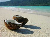 Opened coconut on the beach — Stock Photo