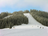 Pista de esqui nas montanhas dos Cárpatos — Fotografia Stock