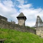Постер, плакат: Nevitskiy castle near Uzhgorod Ukraine