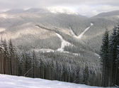 Bukovel ski tracks, Carpathians, Ukraine — Stock Photo