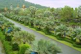 Jardim de Nong nooch, Tailândia — Fotografia Stock