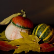 Autumn still life — Stock Photo