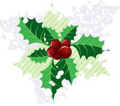Christmas holly, — Stock Photo