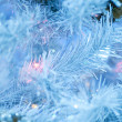 Fur-tree covered with hoarfrost — Stock Photo #1345109