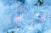 Fur-tree covered with hoarfrost — Stock Photo