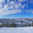 Royalty-Free Stock Photo: Winter panorama