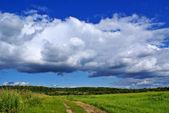 Summer landscape c — Stock Photo