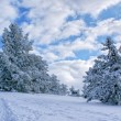 Winter landscape — Stock Photo #1507307