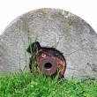 Old millstone on green grass - Stock Photo