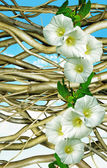 Hurdle and convolvulus on blue sky — Stock Photo