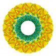 Abstract flower circle — Stock Photo