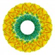 Stock Photo: Abstract flower circle