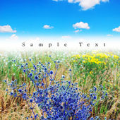 Blue grass prospectus. — Stock Photo
