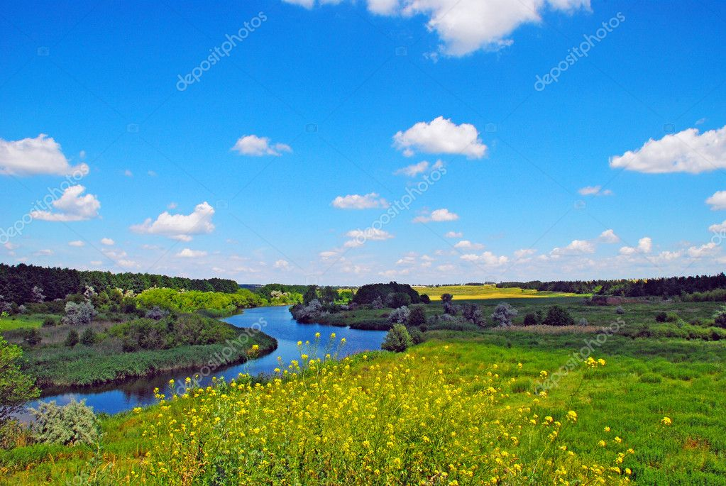 Landscape summer.  Stock Photo #1344706