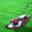 Lawn mower on green grass backyard - Stock Photo