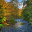 Stock Photo: Colorful autumn river