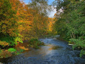Colorful autumn river — Stock Photo