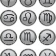 Zodiac Icon Set — Stock Vector