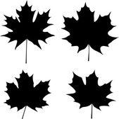 Maple leaves silhouette — Stock Vector