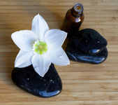 Spa black stones with white flower on wo — Stock Photo