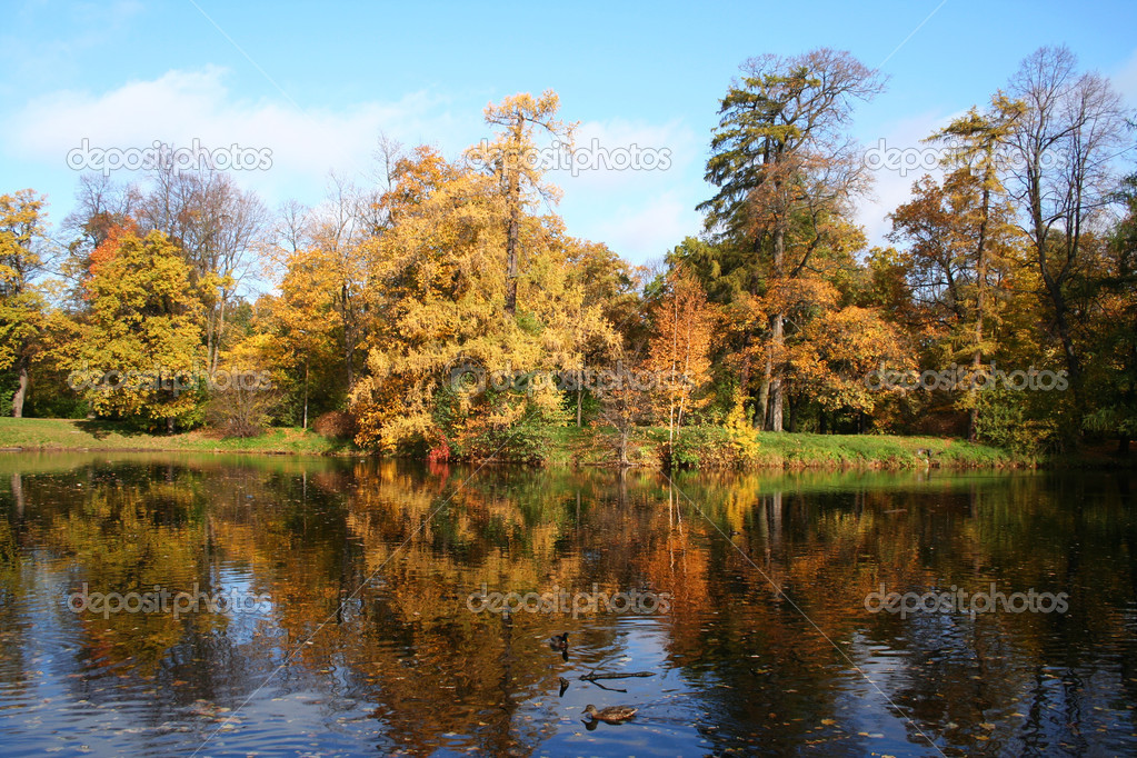 Golden autumn in Russia. Reflection in the park of Saint-Petersburg — Stock Photo #1142986