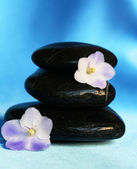 Spa stones with flowers on blue silk bac — Stock Photo