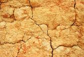 Soil texture as background — Stock Photo