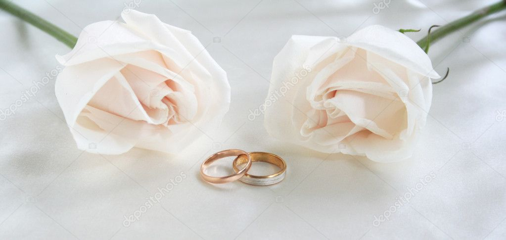 Wedding rings and roses can use as background  — Stock Photo #1198636