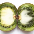 Kiwi fruit on a white background — ストック写真