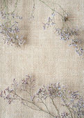 Bunch of wormwood flowers on sackcloth — Zdjęcie stockowe