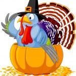 Pilgrim Turkey in pumpkin — Stock Vector