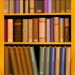 Bookshelf — Stock Vector