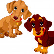 Dachshunds - Stock Vector